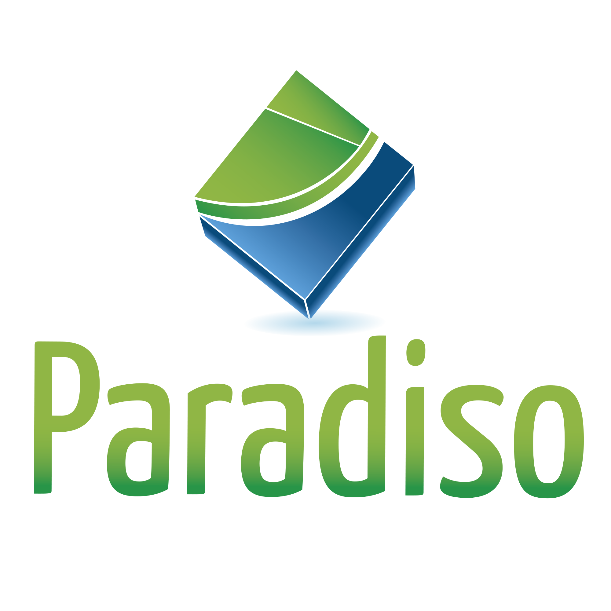Paradiso Software